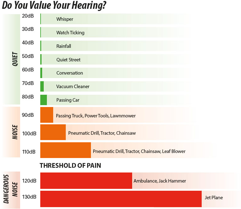 do you value your hearing chart